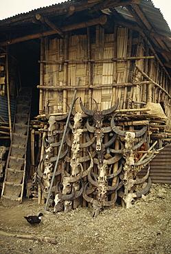 Nocte tribe house, Tirap area, Arunachal Pradesh state, India, Asia