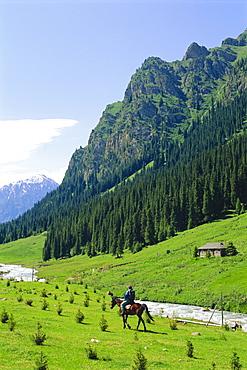 Man on horse at Altyn-Arashan near Kara-Kol, Kyrgyzstan, Central Asia