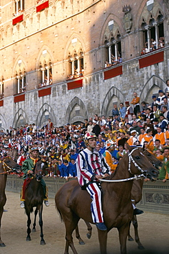 Horses waiting for start, Palio horse race, Siena, Tuscany, Italy, Europe