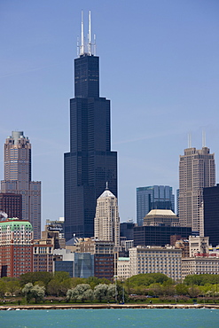Sears Tower and skyline, Chicago, Illinois, United States of America, North America