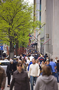 Shoppers on North Michigan Avenue, The Magnificent Mile, Chicago, Illinois, United States of America, North America