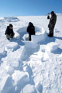 Inuit cutting snow blocks using a saw and a knife to make an igloo, Nunavut, Canada, North America