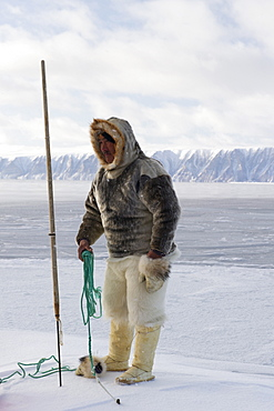 Inuit or Inughuit subsistence hunter in traditional clothing for winter and spring of seal skin boots (Kamiks), polar bear fur trousers, seal skin mitts and parka, Greenland, Denmark, Polar Regions - 465-3393