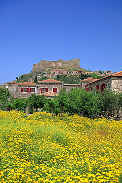 Castle above the town of Molyvos, Lesbos, North Aegean Islands, Greek Islands, Greece, Europe