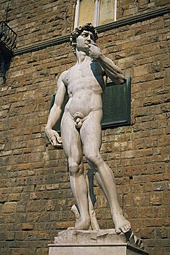 The statue of David by Michelangelo in the Piazza della Signoria in Florence, Tuscany, Italy, Europe