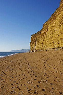 Beach and cliffs, Burton Bradstock, Jurassic Coast, UNESCO World Heritage Site, Dorset, England, United Kingdom, Europe