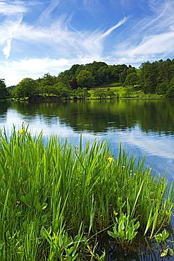 Loughrigg Tarn, Lake District National Park, Cumbria, England, United Kingdom, Europe