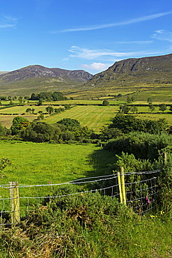 Slievenaglogh, Mourne Mountains, County Down, Ulster, Northern Ireland, United Kingdom, Europe