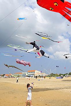 Kite festival, Charente Maritime, France, Europe