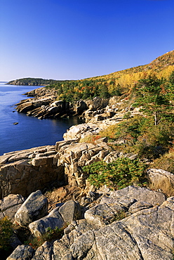 Coastline, Acadia National Park, Maine, New England, United States of America (U.S.A.), North America