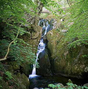 Stock Ghyll Force, Ambleside, Lake District, Cumbria, England, United Kingdom, Europe