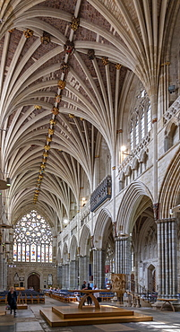 Nave looking West, Exeter Cathedral, Exeter, Devon, England, United Kingdom, Europe