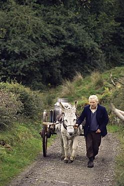 Donkey cart, County Leitrim, Connacht, Republic of Ireland (Eire), Europe