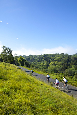 Cyclists on The Zig Zag, Box Hill, site of 2012 Olympics cycling road race, Surrey Hills, North Downs, Surrey, England, United Kingdom, Europe