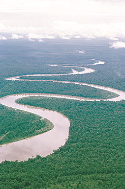 Aerial view of river and forest, West Irian (Irian Jaya). Indonesia, Southeast Asia, Asia