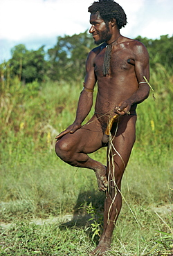 A Dani man, naked except for a penis gourd, in the Highlands of Papua New Guinea, Pacific Islands, Pacific