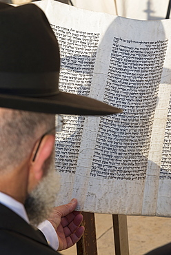 Jew reading from a Torah scroll, Western Wall, Jerusalem Old city, Israel, Middle East
