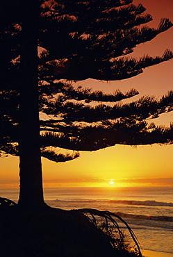 Sunrise, Pine Beach, Gisborne, East Coast, North Island, New Zealand, Pacific