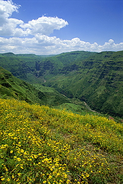 Waterfall cascades down lush valley, Mulu Gorge, near Addis Ababa, Ethiopia, Africa