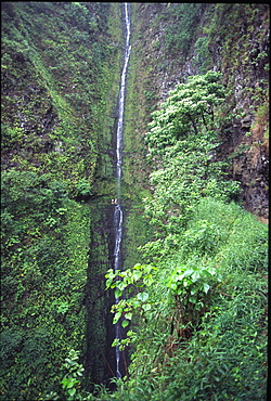Kapaloa Falls, Kohala Ditch Trail, Island of Hawaii