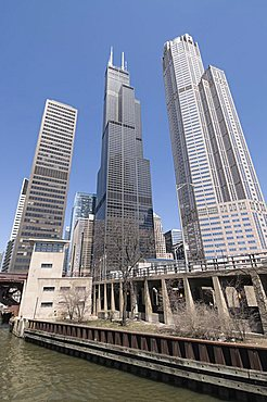 Sears Tower from the Chicago River, Chicago, Illinois, United States of America, North America