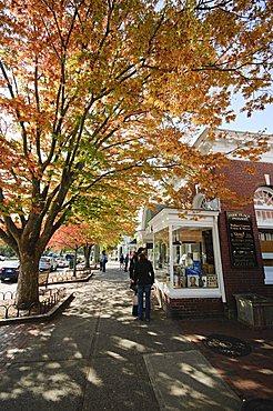 Main Street, East Hampton, the Hamptons, Long Island, New York State, United States of America, North America