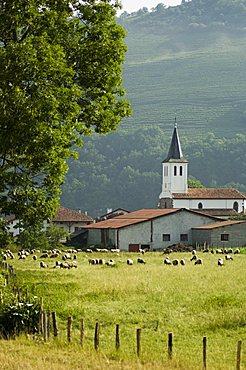 Countryside near Saint Jean Pied de Port (St.-Jean-Pied-de-Port), Basque country, Pyrenees-Atlantiques, Aquitaine, France, Europe