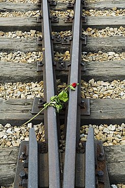 Tributes left to the dead at Auschwitz second concentration camp at Birkenau, UNESCO World Heritage Site, near Krakow (Cracow), Poland, Europe