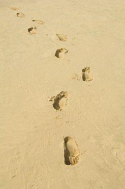 Praia de Santa Monica (Santa Monica Beach), Boa Vista, Cape Verde Islands, Atlantic, Africa