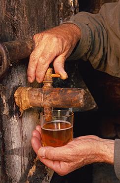 Tasting, farm cider, Normandie, France, Europe