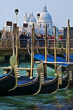 Gondolas and tourists in front of La Salute Church, Venice, UNESCO World Heritage Site, Veneto, Italy, Europe