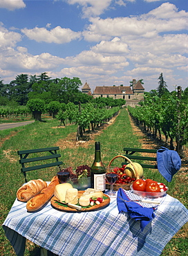 Table set with a picnic lunch in a vineyard in Aquitaine, France, Europe