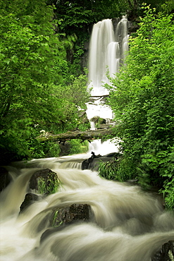 Waterfall near Le Mont Dor, Auvergne, France, Europe