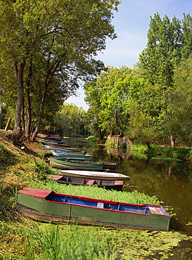 Tranquil scene of boats moored on the banks at Pont St. Martin, Loire Atlantique, Pays de la Loire, France, Europe