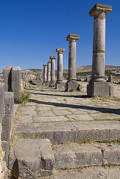 Decumanus Maximus (main east west road), Roman site of Volubilis, UNESCO World Heritage Site, Morocco, North Africa, Africa