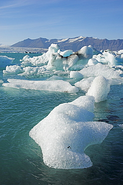 Icebergs in the glacial melt water lagoon, Jokulsarlon Breidamerkurjokull, South area, Iceland, Polar Regions