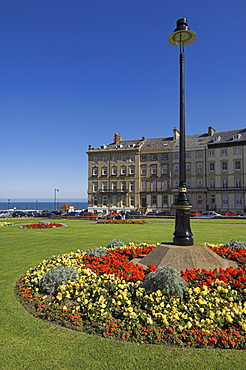 Flower beds at the Royal Crescent, Seafront, Whitby, North Yorkshire, Yorkshire, England, United Kingdom, Europe