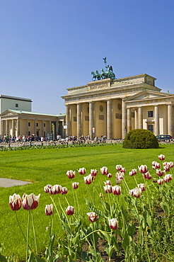 Tourists enjoying spring sunshine in the tulip filled gardens at the Brandenburg Gate with the Quadriga winged victory statue on top, Pariser Platz, Berlin, Germany, Europe