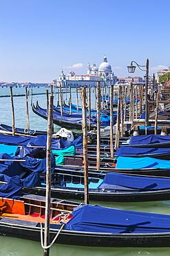 Gondolas moored in the Bacino di San Marco (St. Mark's Basin), waterfront, Venice, UNESCO World Heritage Site, Veneto, Italy, Europe