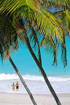 Bottom Bay Beach, East Coast, Barbados, Caribbean, West Indies