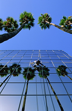 Window cleaner on the outside of glass fronted office block, Los Angeles