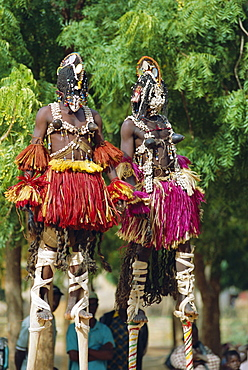 Dogon dancers on stilts, Sangha, Mali, Africa