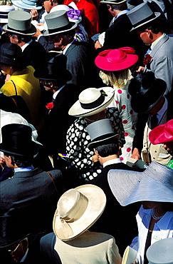 Hats, horse race, Royal Ascot, Ascot, England, UK, Europe
