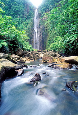 Carbet waterfall, Basse Terre, Guadeloupe, Caribbean, Central America