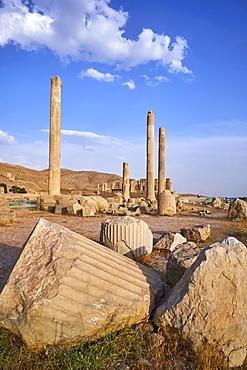 Pillars of the Apadana palace, Persepolis, UNESCO World Heritage Site, Fars Province, Iran, Middle East