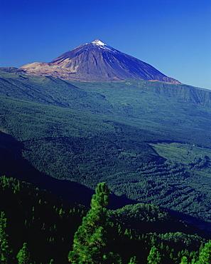 Peak of Mount Teide and pine trees from Mirador Ortuno, Parque Nacional del Teide, Tenerife, Canary Islands, Spain, Europe