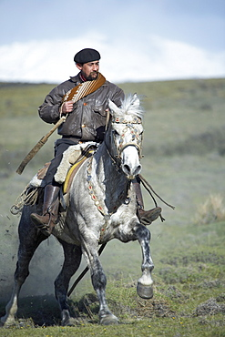 A gaucho riding his horse, Torres del Paine National Park, Patagonian Andes, Patagonia, Chile, South America