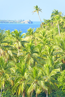 Nanuya Lailai Island, Yasawa island group, Fiji, South Pacific islands, Pacific