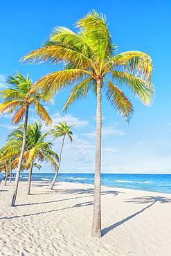 Fort Lauderdale beach, Fort Lauderdale, Broward County, Florida, USA