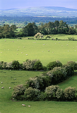 View from Rock of Cashel, Plain of Tipperary, County Tipperary, Eire (Ireland), Europe